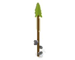 11' Black spruce tree (G-11033)